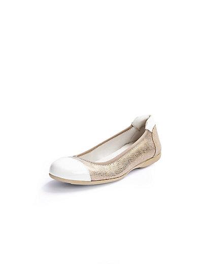 Scarpio - Ballerina's